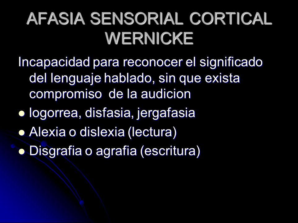 AFASIA SENSORIAL CORTICAL WERNICKE Incapacidad para reconocer el significado del lenguaje hablado, sin que exista compromiso de la audicion logorrea,