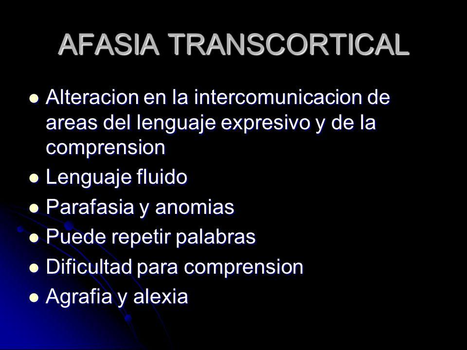 AFASIA TRANSCORTICAL Alteracion en la intercomunicacion de areas del lenguaje expresivo y de la comprension Alteracion en la intercomunicacion de area