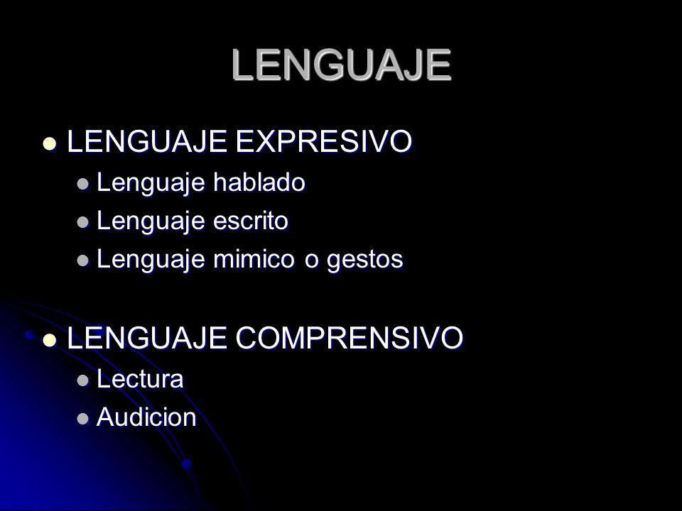 LENGUAJE LENGUAJE EXPRESIVO LENGUAJE EXPRESIVO Lenguaje hablado Lenguaje hablado Lenguaje escrito Lenguaje escrito Lenguaje mimico o gestos Lenguaje m