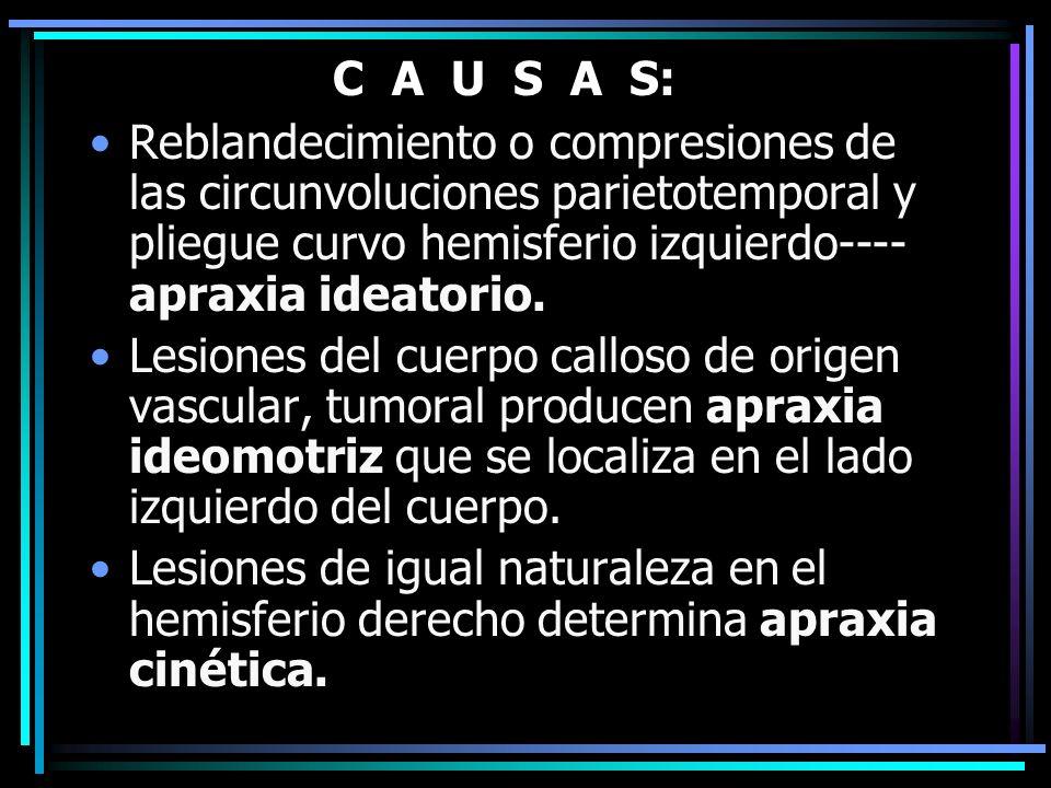 C A U S A S: Reblandecimiento o compresiones de las circunvoluciones parietotemporal y pliegue curvo hemisferio izquierdo---- apraxia ideatorio. Lesi
