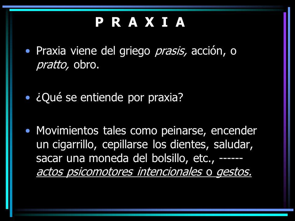 P R A X I A Praxia viene del griego prasis, acción, o pratto, obro. ¿Qué se entiende por praxia? Movimientos tales como peinarse, encender un cigarril