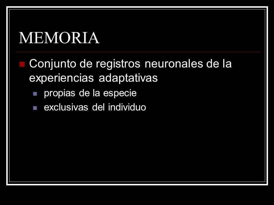MEMORIA Conjunto de registros neuronales de la experiencias adaptativas propias de la especie exclusivas del individuo
