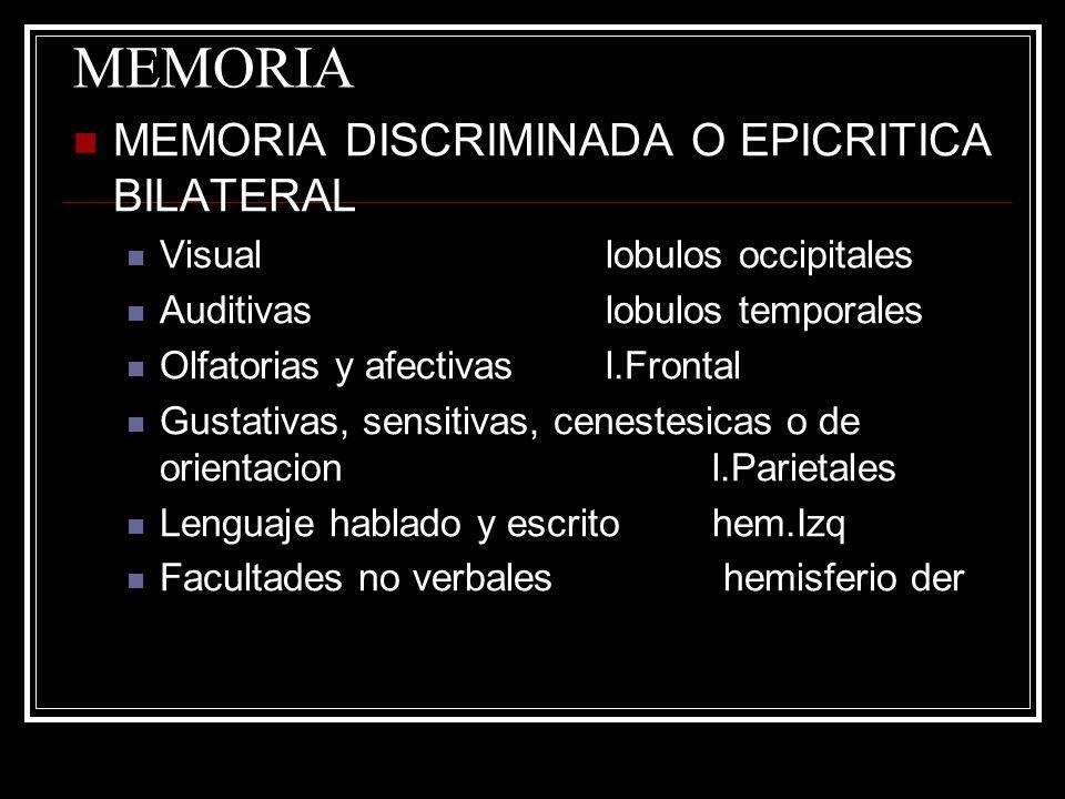 MEMORIA MEMORIA DISCRIMINADA O EPICRITICA BILATERAL Visuallobulos occipitales Auditivaslobulos temporales Olfatorias y afectivasl.Frontal Gustativas,