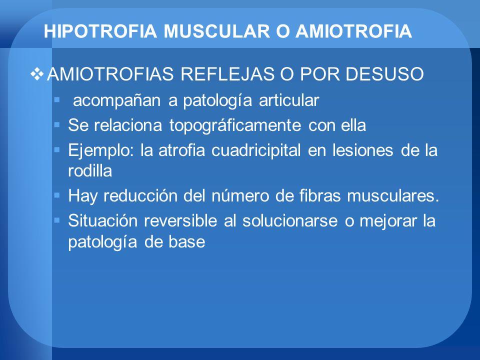 HIPOTROFIA MUSCULAR O AMIOTROFIA AMIOTROFIAS REFLEJAS O POR DESUSO acompañan a patología articular Se relaciona topográficamente con ella Ejemplo: la