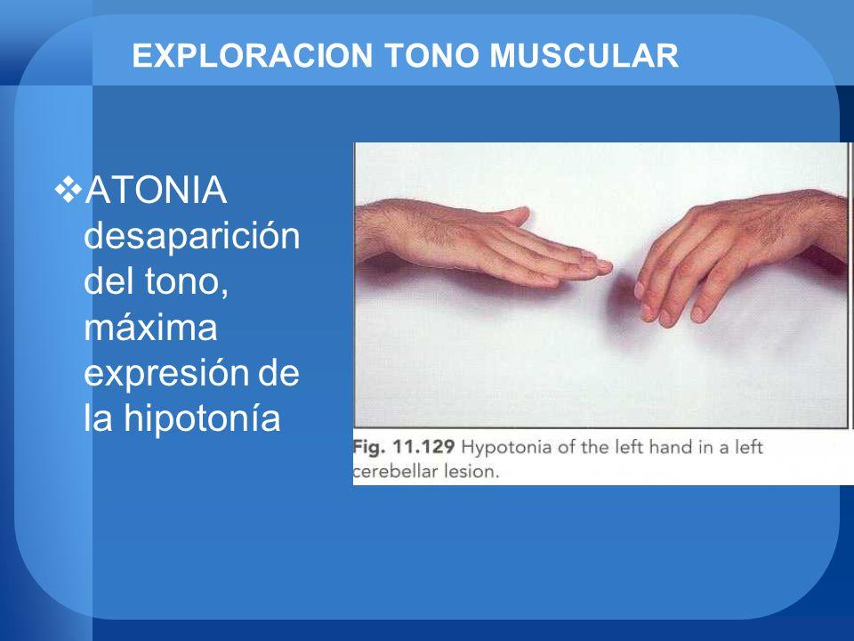 EXPLORACION TONO MUSCULAR ATONIA desaparición del tono, máxima expresión de la hipotonía