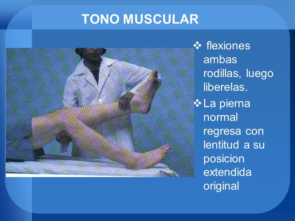 TONO MUSCULAR flexiones ambas rodillas, luego liberelas. La pierna normal regresa con lentitud a su posicion extendida original