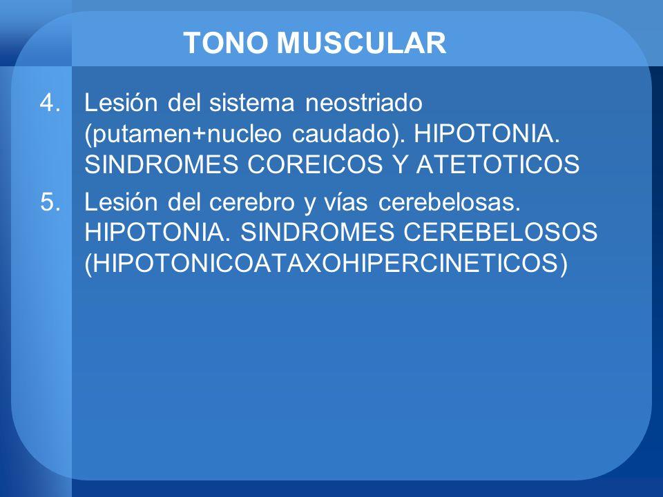 TONO MUSCULAR 4.Lesión del sistema neostriado (putamen+nucleo caudado). HIPOTONIA. SINDROMES COREICOS Y ATETOTICOS 5.Lesión del cerebro y vías cerebel