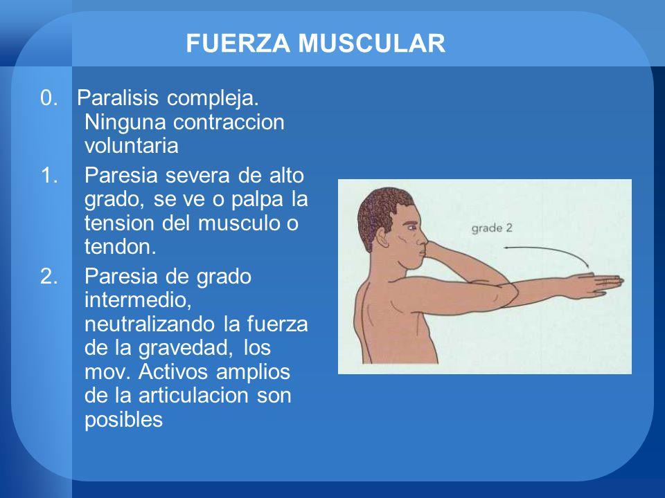 FUERZA MUSCULAR 0. Paralisis compleja. Ninguna contraccion voluntaria 1.Paresia severa de alto grado, se ve o palpa la tension del musculo o tendon. 2