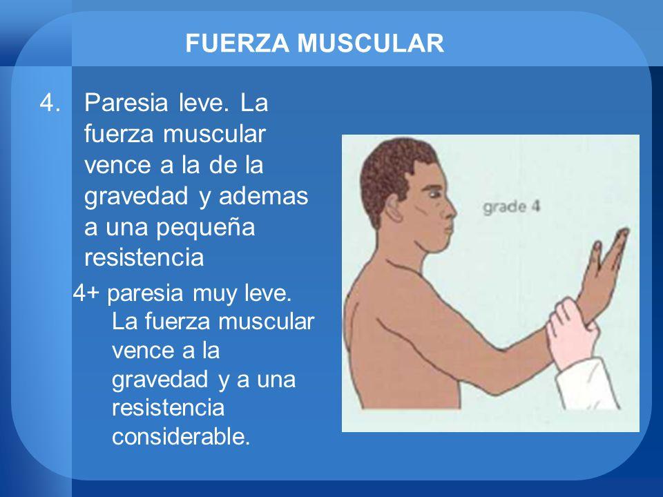 FUERZA MUSCULAR 4.Paresia leve. La fuerza muscular vence a la de la gravedad y ademas a una pequeña resistencia 4+ paresia muy leve. La fuerza muscula