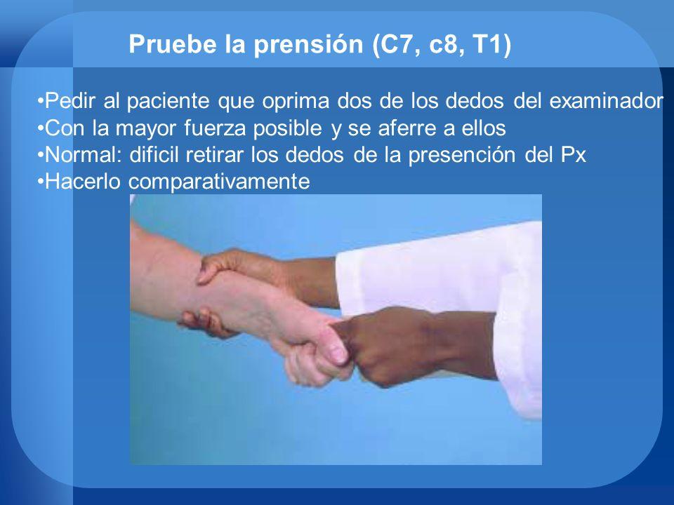 Pruebe la prensión (C7, c8, T1) Pedir al paciente que oprima dos de los dedos del examinador Con la mayor fuerza posible y se aferre a ellos Normal: d