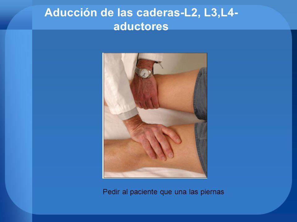 Aducción de las caderas-L2, L3,L4- aductores Pedir al paciente que una las piernas