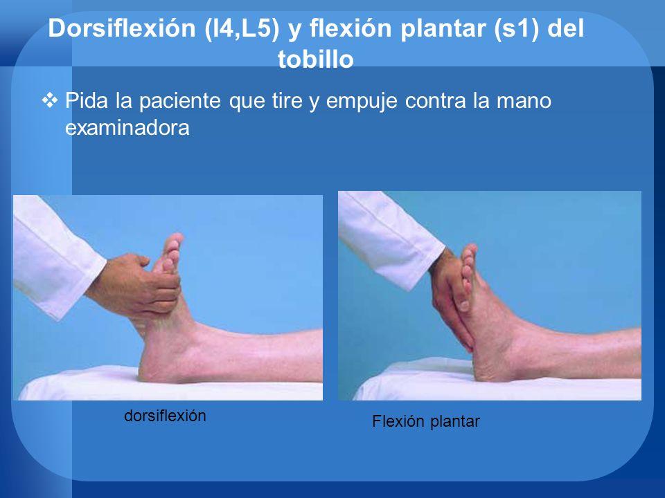 Dorsiflexión (l4,L5) y flexión plantar (s1) del tobillo Pida la paciente que tire y empuje contra la mano examinadora dorsiflexión Flexión plantar