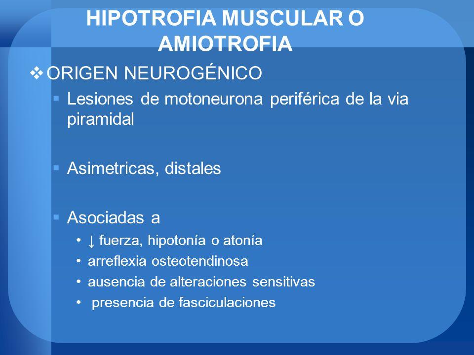 HIPOTROFIA MUSCULAR O AMIOTROFIA ORIGEN NEUROGÉNICO Lesiones de motoneurona periférica de la via piramidal Asimetricas, distales Asociadas a fuerza, h