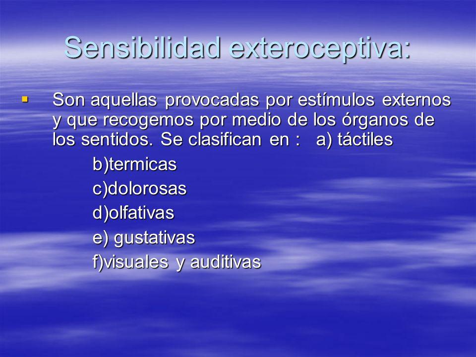 Sensibilidad exteroceptiva: Son aquellas provocadas por estímulos externos y que recogemos por medio de los órganos de los sentidos. Se clasifican en