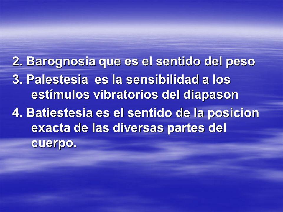 2. Barognosia que es el sentido del peso 3. Palestesia es la sensibilidad a los estímulos vibratorios del diapason 4. Batiestesia es el sentido de la
