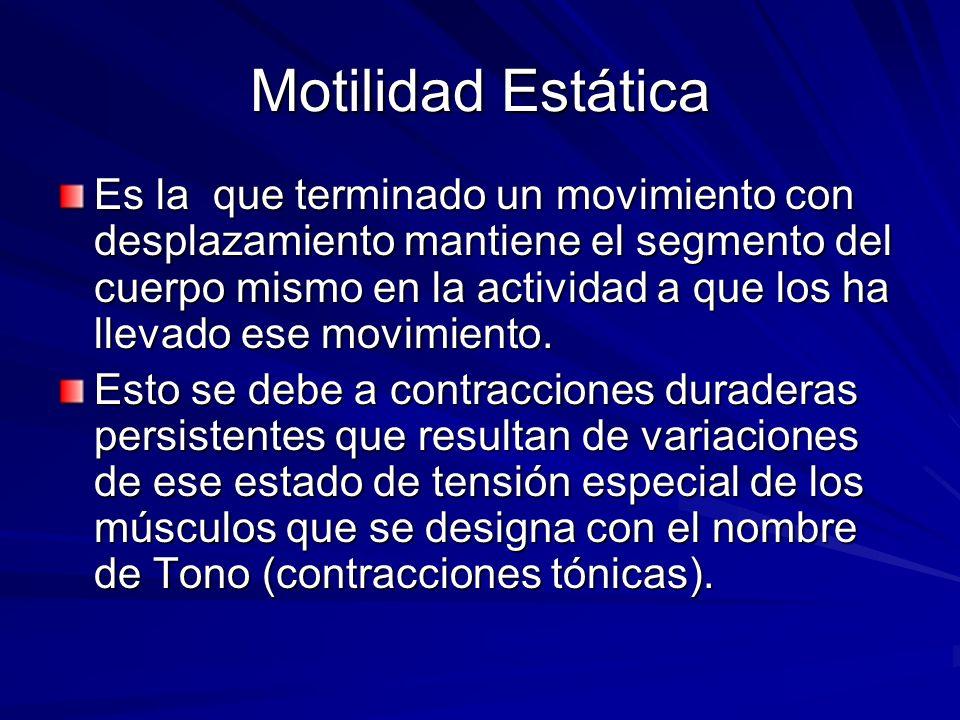 Motilidad Estática Es la que terminado un movimiento con desplazamiento mantiene el segmento del cuerpo mismo en la actividad a que los ha llevado ese