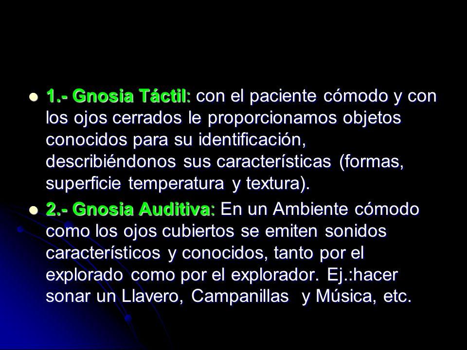 1.- Gnosia Táctil: con el paciente cómodo y con los ojos cerrados le proporcionamos objetos conocidos para su identificación, describiéndonos sus cara