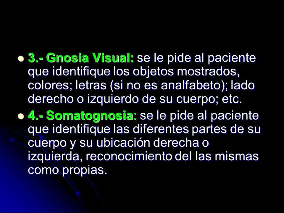 3.- Gnosia Visual: se le pide al paciente que identifique los objetos mostrados, colores; letras (si no es analfabeto); lado derecho o izquierdo de su cuerpo; etc.