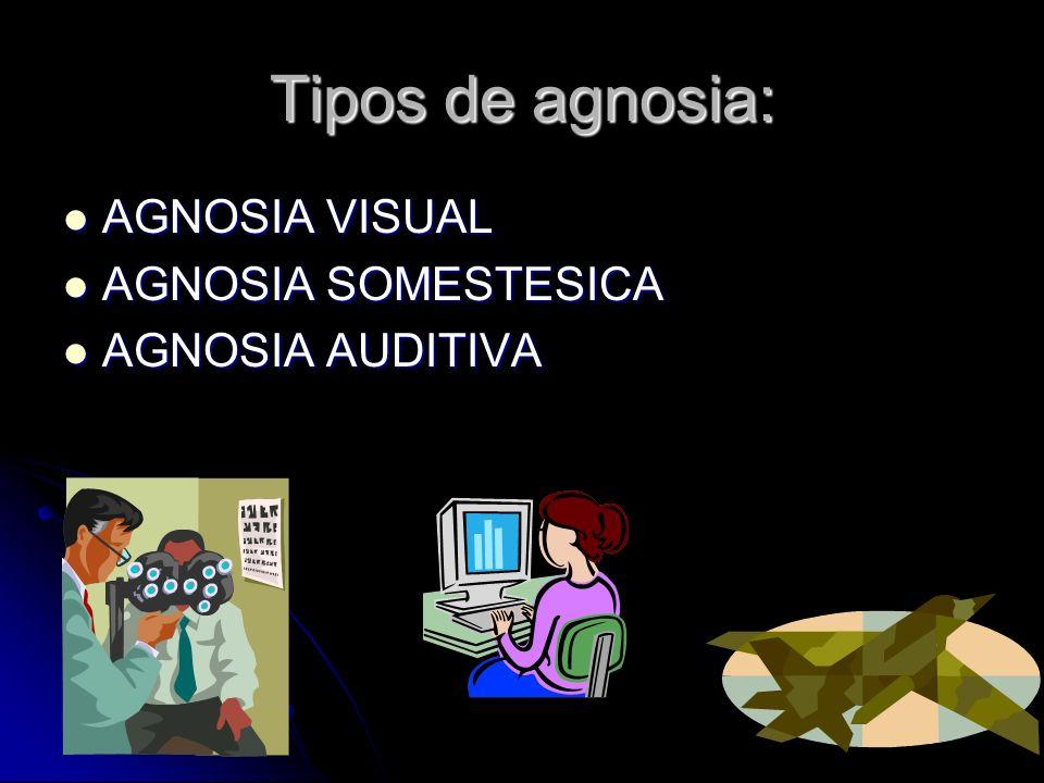 Tipos de agnosia: AGNOSIA VISUAL AGNOSIA VISUAL AGNOSIA SOMESTESICA AGNOSIA SOMESTESICA AGNOSIA AUDITIVA AGNOSIA AUDITIVA