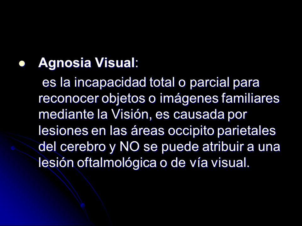Agnosia Visual: Agnosia Visual: es la incapacidad total o parcial para reconocer objetos o imágenes familiares mediante la Visión, es causada por lesiones en las áreas occipito parietales del cerebro y NO se puede atribuir a una lesión oftalmológica o de vía visual.