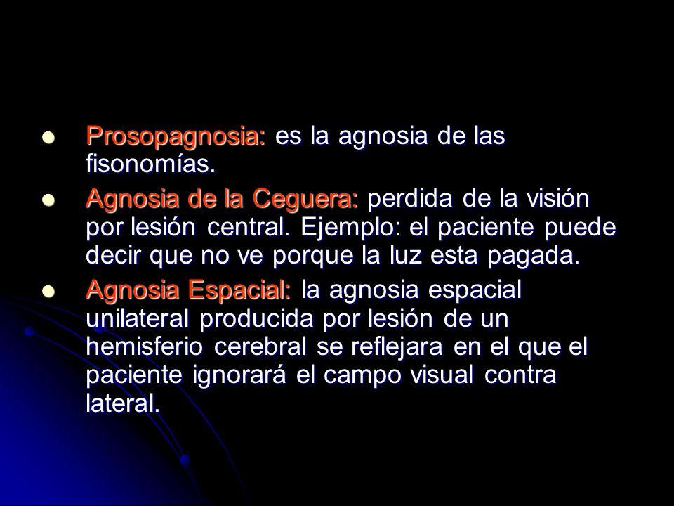 Prosopagnosia: es la agnosia de las fisonomías. Prosopagnosia: es la agnosia de las fisonomías. Agnosia de la Ceguera: perdida de la visión por lesión
