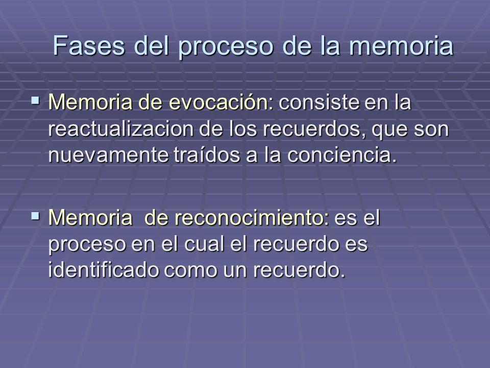 Memoria de evocación: consiste en la reactualizacion de los recuerdos, que son nuevamente traídos a la conciencia. Memoria de evocación: consiste en l