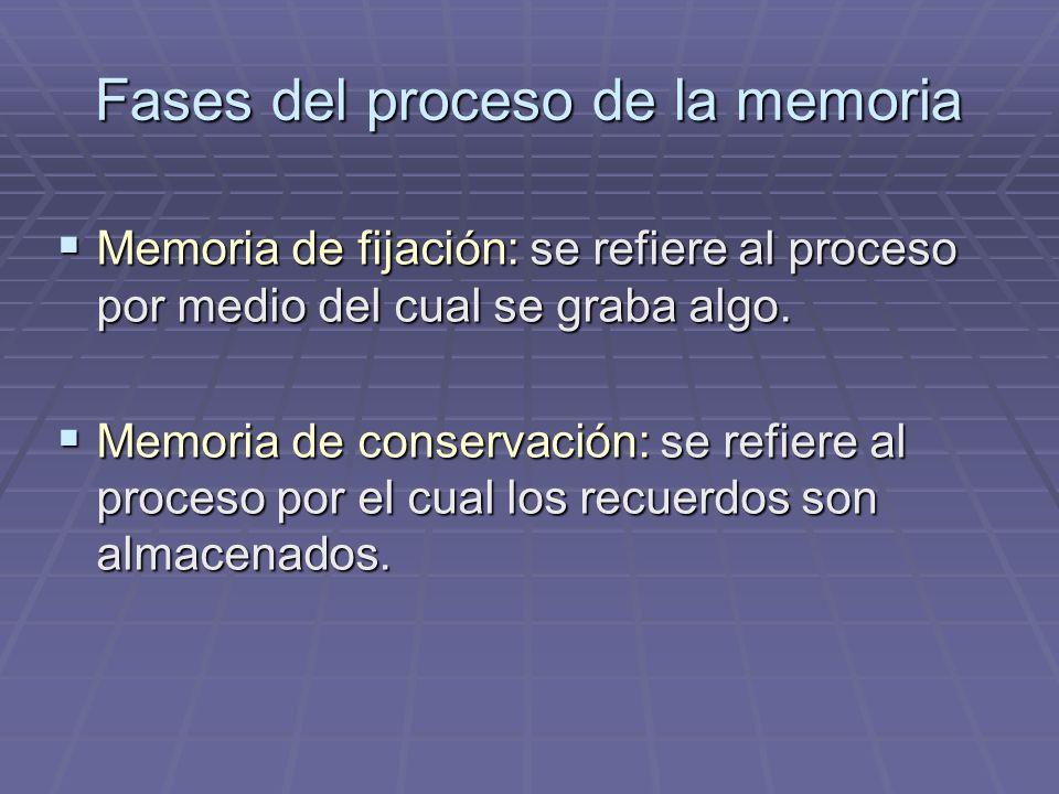 Fases del proceso de la memoria Memoria de fijación: se refiere al proceso por medio del cual se graba algo. Memoria de fijación: se refiere al proces