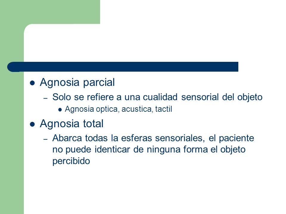 Agnosia parcial – Solo se refiere a una cualidad sensorial del objeto Agnosia optica, acustica, tactil Agnosia total – Abarca todas la esferas sensori