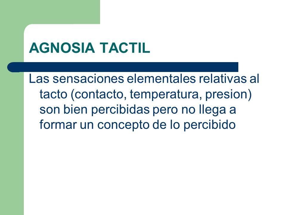 AGNOSIA TACTIL Las sensaciones elementales relativas al tacto (contacto, temperatura, presion) son bien percibidas pero no llega a formar un concepto
