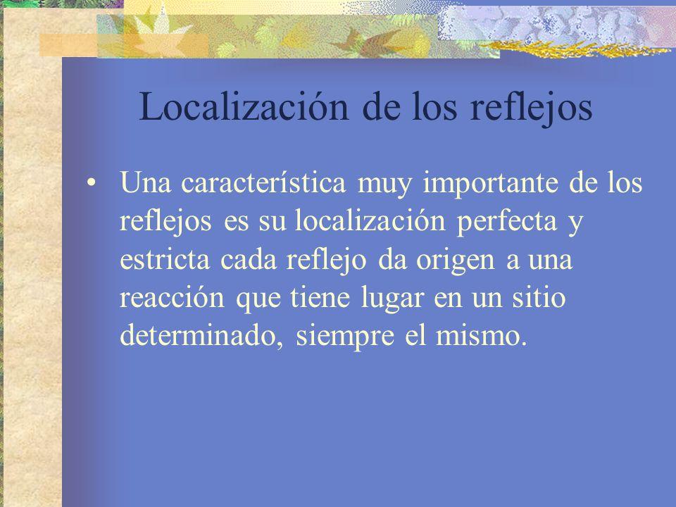 Localización de los reflejos Una característica muy importante de los reflejos es su localización perfecta y estricta cada reflejo da origen a una rea