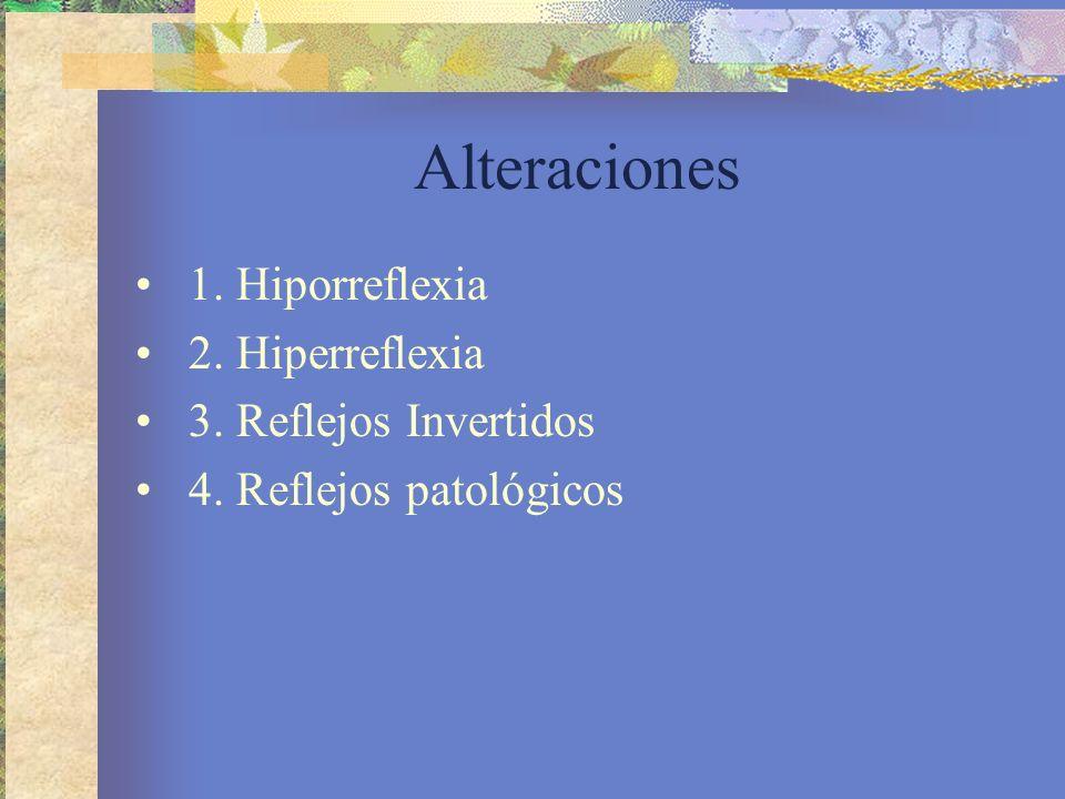 Alteraciones 1. Hiporreflexia 2. Hiperreflexia 3. Reflejos Invertidos 4. Reflejos patológicos