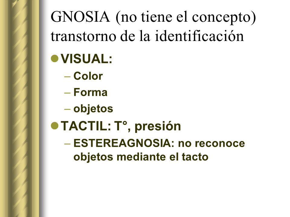 GNOSIA (no tiene el concepto) transtorno de la identificación VISUAL: –Color –Forma –objetos TACTIL: T°, presión –ESTEREAGNOSIA: no reconoce objetos m