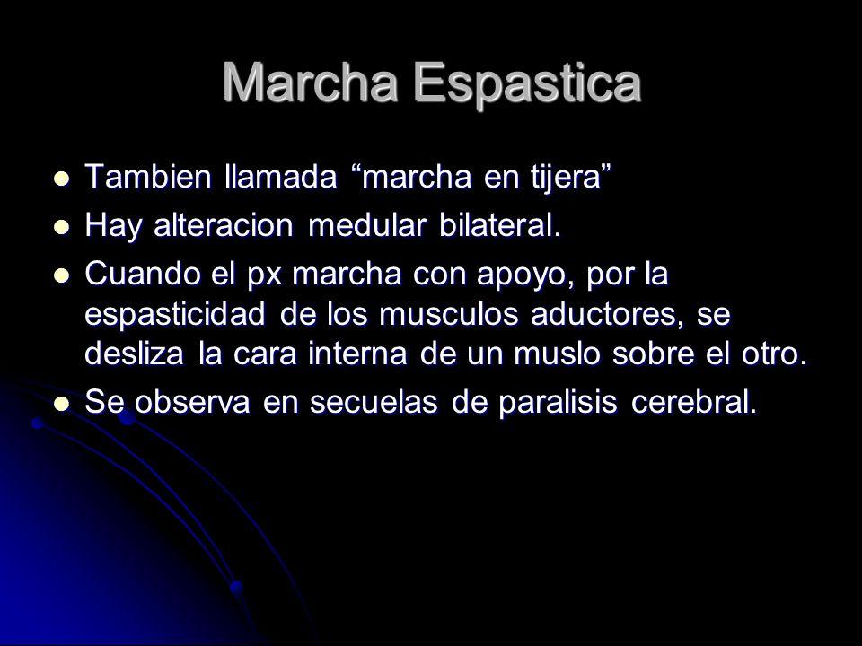 Marcha Espastica Tambien llamada marcha en tijera Tambien llamada marcha en tijera Hay alteracion medular bilateral. Hay alteracion medular bilateral.