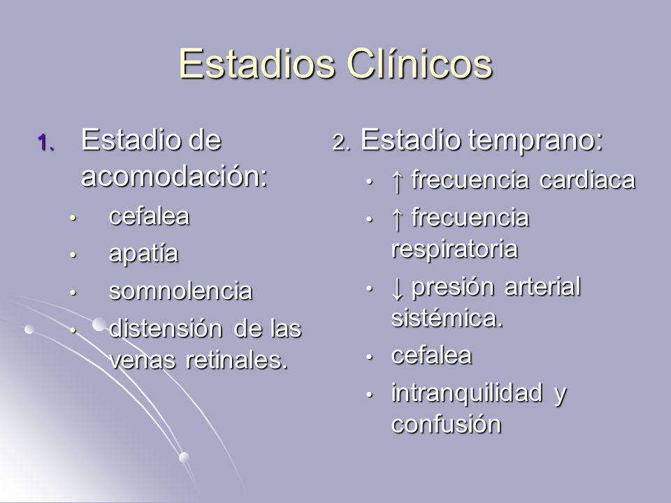 Estadios Clínicos 1. Estadio de acomodación: cefalea cefalea apatía apatía somnolencia somnolencia distensión de las venas retinales. distensión de la