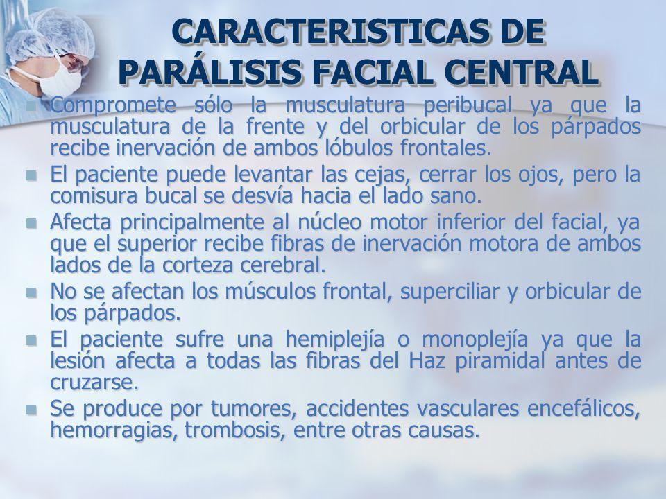 Compromete sólo la musculatura peribucal ya que la musculatura de la frente y del orbicular de los párpados recibe inervación de ambos lóbulos frontal