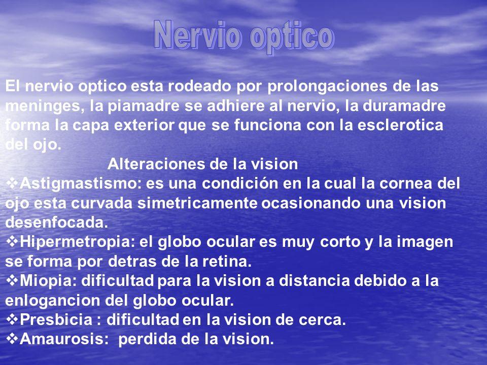 Exploracion 1) Agudeza visual : se explora por medio de la tabla de rosembaum, que debe colocarse a 35cms del paciente se hace en cada ojo por separado.