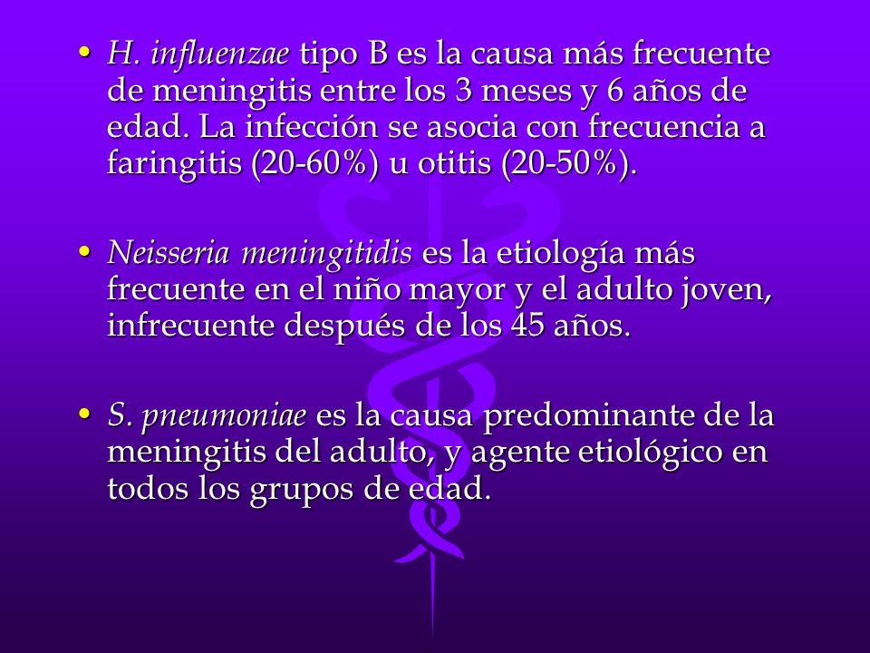 H.influenzae tipo B es la causa más frecuente de meningitis entre los 3 meses y 6 años de edad.
