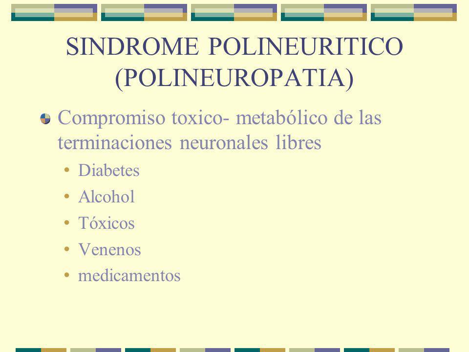 SINDROME POLINEURITICO (POLINEUROPATIA) Cuadro sensitivo-motor o mixto Predomina en la región distal de los miembros.