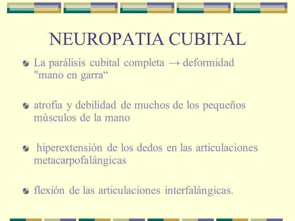 POLINEUROPATIA Asociada con farmacos y toxinas ambientales Amiodarona Cisplantino Dapsona (lepra) Otras causas