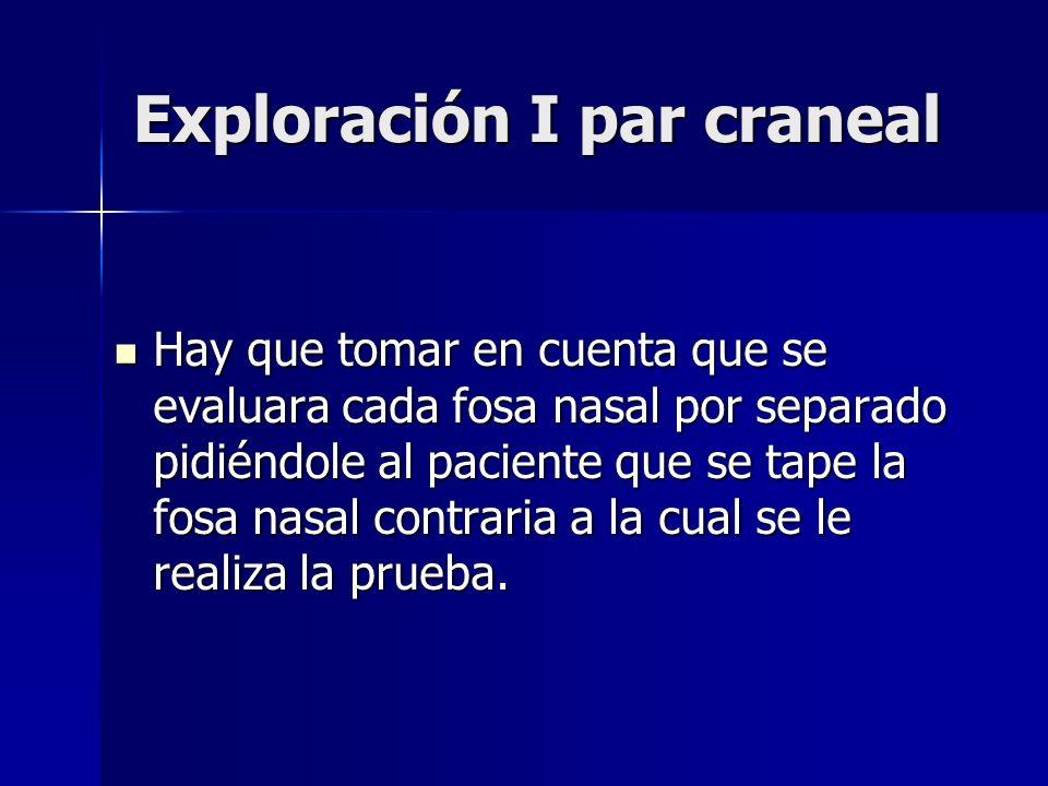 Exploración I par craneal Hay que tomar en cuenta que se evaluara cada fosa nasal por separado pidiéndole al paciente que se tape la fosa nasal contra