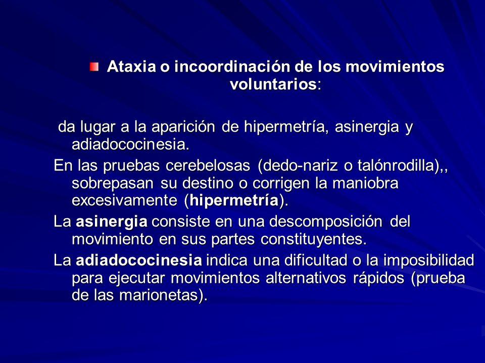 Ataxia o incoordinación de los movimientos voluntarios: da lugar a la aparición de hipermetría, asinergia y adiadococinesia. da lugar a la aparición d