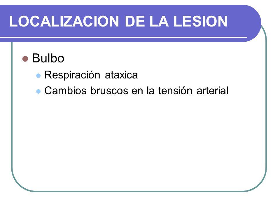 LOCALIZACION DE LA LESION Bulbo Respiración ataxica Cambios bruscos en la tensión arterial