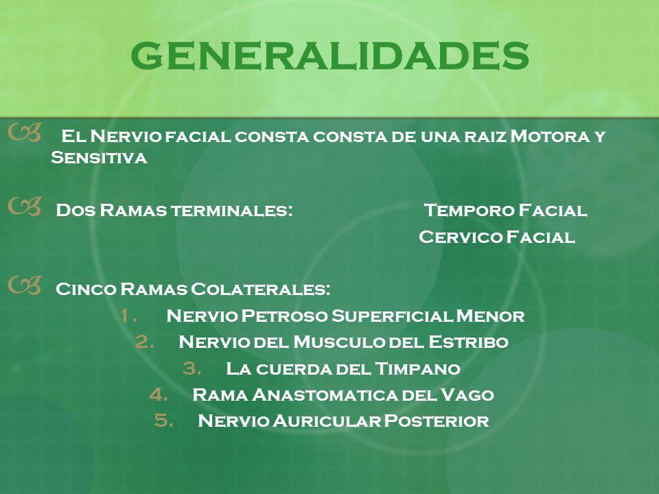 GENERALIDADES El Nervio facial consta consta de una raiz Motora y Sensitiva Dos Ramas terminales: Temporo Facial Cervico Facial Cinco Ramas Colaterale