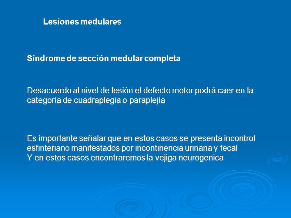 Lesiones medulares Síndrome de sección medular completa Desacuerdo al nivel de lesión el defecto motor podrá caer en la categoría de cuadraplegia o pa