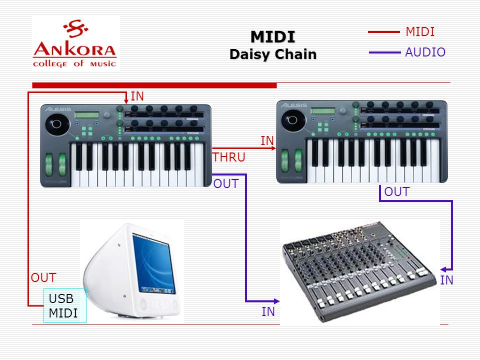MIDI Daisy Chain USB MIDI OUT IN THRU IN MIDI AUDIO OUT IN