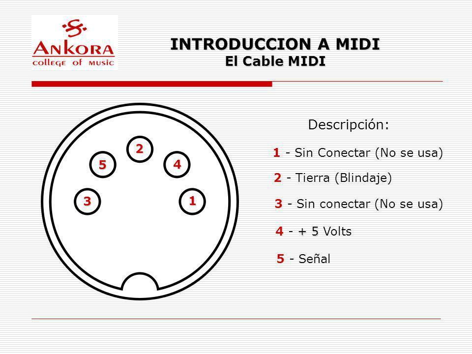 INTRODUCCION A MIDI El Cable MIDI 1 4 2 3 5 Descripción: 1 - Sin Conectar (No se usa) 2 - Tierra (Blindaje) 3 - Sin conectar (No se usa) + 5 4 - + 5 V