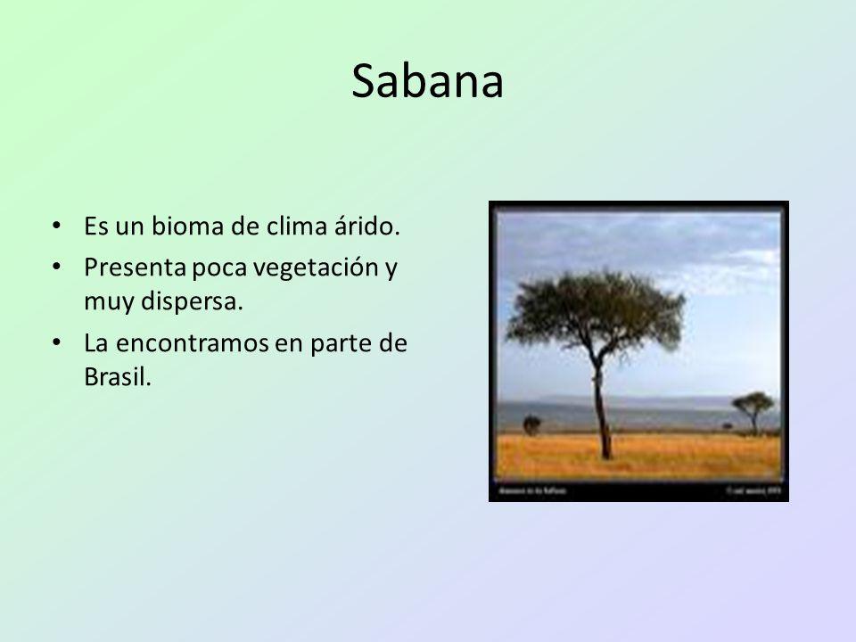 Sabana Es un bioma de clima árido. Presenta poca vegetación y muy dispersa. La encontramos en parte de Brasil.