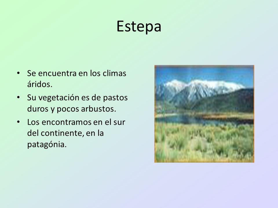 Estepa Se encuentra en los climas áridos. Su vegetación es de pastos duros y pocos arbustos. Los encontramos en el sur del continente, en la patagónia