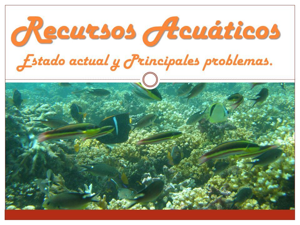 Recursos Acuáticos Recursos Acuáticos Estado actual y Principales problemas.