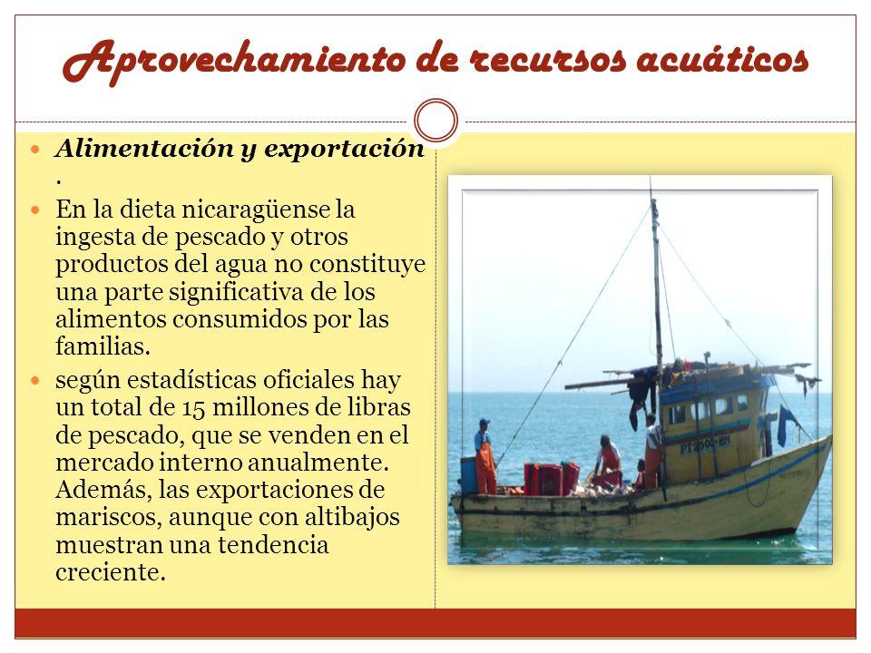 Alimentación y exportación. En la dieta nicaragüense la ingesta de pescado y otros productos del agua no constituye una parte significativa de los ali